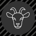 animal, donkey, face, goat, head, nanny, stupid icon