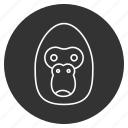 animal, ape, face, gorilla, head, monkey, wildlife icon