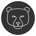animal, avatar, bear face, grizzly bear, jaws, mammal, predator icon