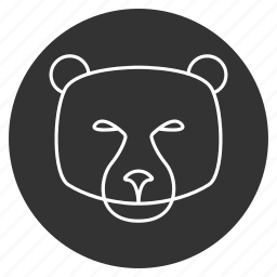 animal, avatar, bear face, grizzly bear, jaws, mammal, predator icon