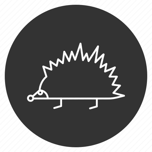 animal, crew cut, hedgehog, nature, needles, rodent, spikes icon