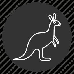 animal, australian, kangaroo, mammal, wallaby, wallaroo, wildlife icon