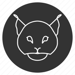 animal, avatar, bobcat, face, feline, lynx, trot icon