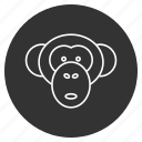 animal, ape, character, face, head, marmoset, monkey icon