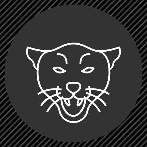animal, cat, cougar, head, panther, wild, wildlife icon