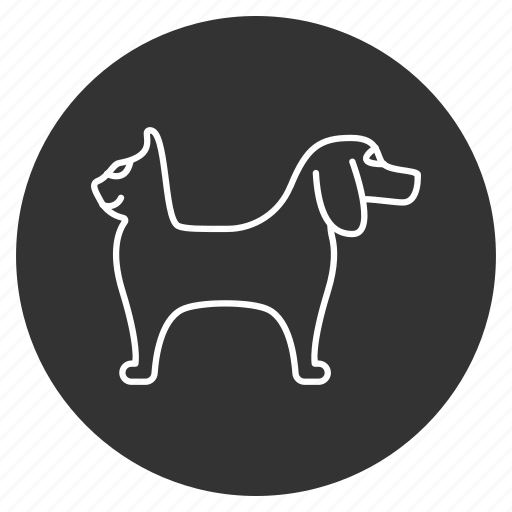 animals, cat, dog, fauna, pets, vet, veterinary icon
