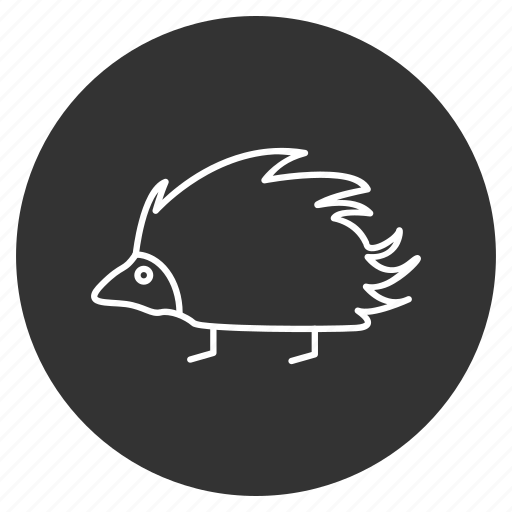 animal, hedgehog, nature, needles, porcupine, rodent, spikes icon