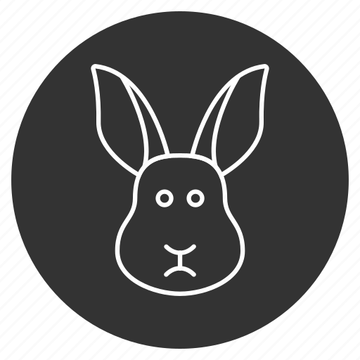 bunny, coney, cony, cute animal, hare, lapin, rabbit icon