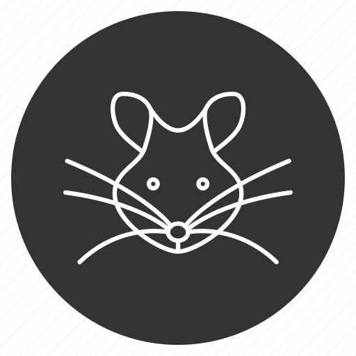 animal, mice, mouse, parasite, pest, rat, rodent icon