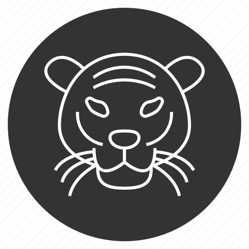 avatar, hunger, jungle, predator, stripes, tiger face, wild animal icon
