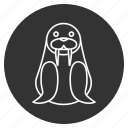 arctic, cute, morsa, morse, sea cow, sea horse, walrus icon