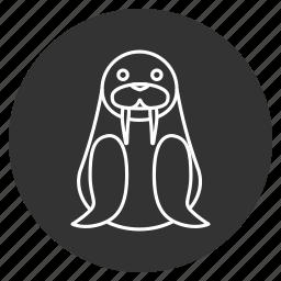 arctic, cute, morsa, morse, sea cow, sea horse, walrus icon