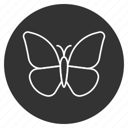 beauty, butterfly, flying, insect, monarch, tropical, wildlife icon