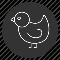 bird, chick, chickling, chuck, cute, spring chicken, springer icon
