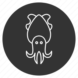 animal, cephalopod, cuttle, cuttlefish, mollusk, sea food, seafood icon