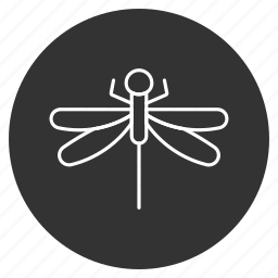 darning-needle, dragonfly, flying adder, insect, natural drone, ragonfly, wings icon