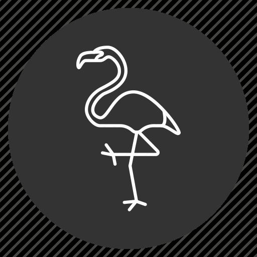 animal, beak, bird, flamingo, heron, jungle, safari icon
