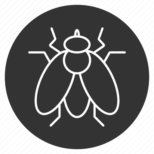 bee, bug, fly, insect, natural drone, pest, wings icon