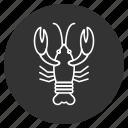 cancer, crawfish, crayfish, lobster, sea food, seafood