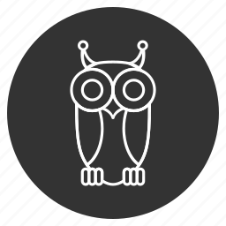 bird, cute, nature, owl, predator, wild, wildlife icon