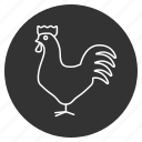 chicken, cock, cockerel, domestic, hen, poultry, rooster