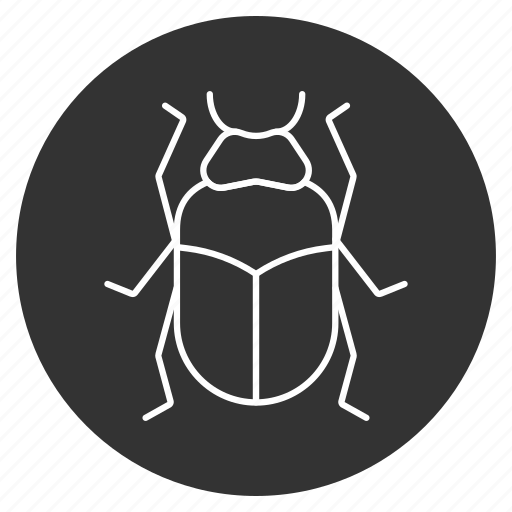 beetle, bug, cockroach, dor, dorr, insect, scarab icon