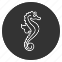 creature, cute, fish, hippocampus, horsefish, sea horse, underwater icon