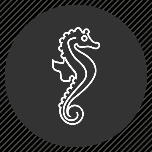 creature, cute, fish, hippocampus, horsefish, sea horse, underwater icon