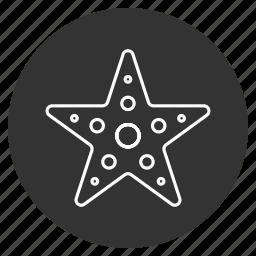 asteroid, five-finger, sea star, seaside, starfish, tropical, underwater icon