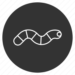 applegrub, caterpillar, gaunt, helminth, insect, mortal, worm icon