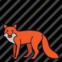animal, fox, mammal, wild, wildlife icon