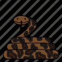 animal, reptile, snake, wild, wildlife icon