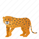 animal, leopard, mammal, wild, wildlife icon