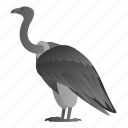 animal, bird, vulture, wild, wildlife icon