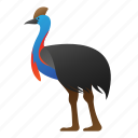 animal, bird, cassowary, wild, wildlife icon