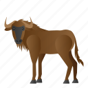 animal, mammal, wild, wildebeest, wildlife icon