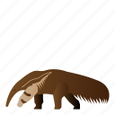animal, anteater, mammal, wild, wildlife icon