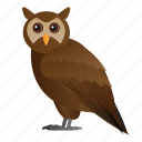 animal, bird, owl, wild, wildlife icon
