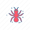 animal, spider, wildlife icon