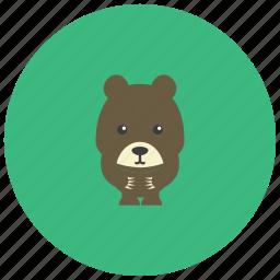 animals, bear, cute, honey icon