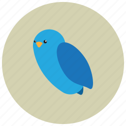 animals, bird, fly, forest, park icon