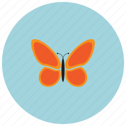 animals, bug, butterfly, spring icon