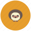 animals, cute, garden, hedgehog, spikes icon