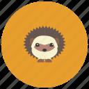 animals, cute, garden, hedgehog, spikes