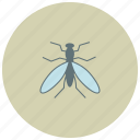 fly, animals, bite, mosquitto, bug icon