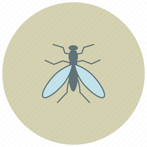 animals, bite, bug, fly, mosquitto icon