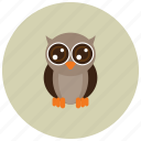 animals, big eyes, cute, night, owl icon