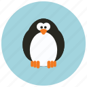 adorable, animals, cute, huggable, pinguin icon