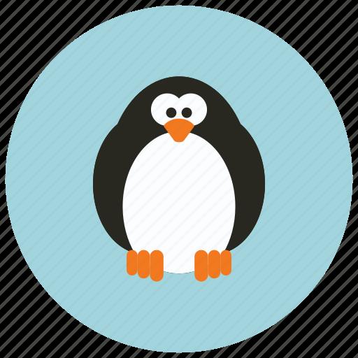 adorable, animals, cute, huggable, pinguin icon