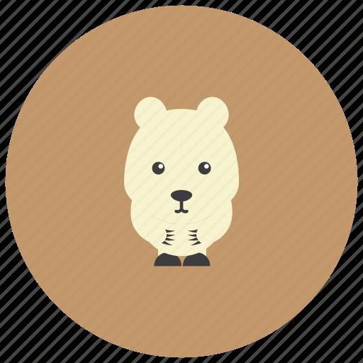 animals, bear, cute, north pole, northpole, polar icon